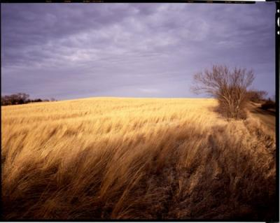 East of Middle Oak Creek, Seward County, NE, March 20, 1994 by John Spence