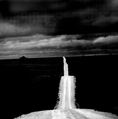 The Road by David Lovekin