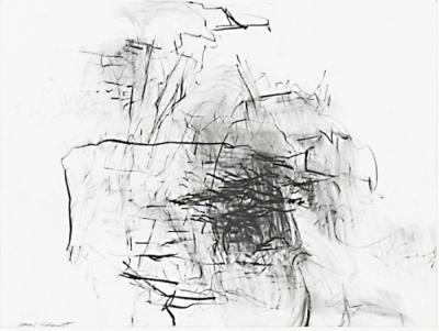 3407-18 Box Canyon by Teresa Schmidt