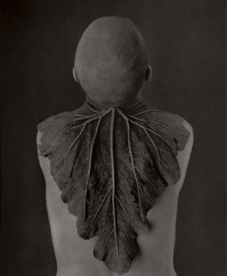 A Silent Mutation/ Head by Roberto Kusterle