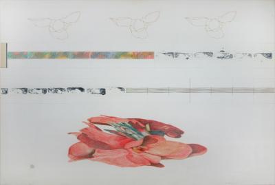 Miami Mixture by David McLeod