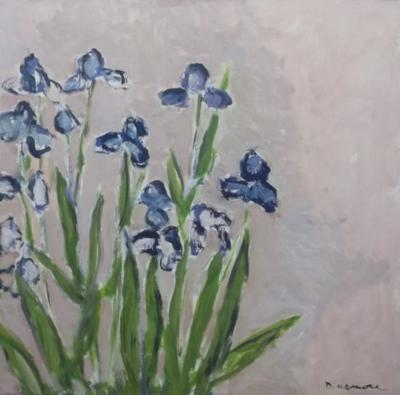 Irises by Stephen Dinsmore