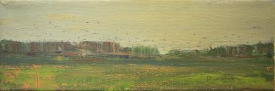 Birds and Land by Stephen Dinsmore