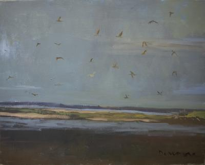 Gulls by Stephen Dinsmore